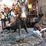 I misteri del famoso Porcellino di Firenze